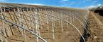 大棚蔬菜种植技术-大棚建造中,要保护好墙体