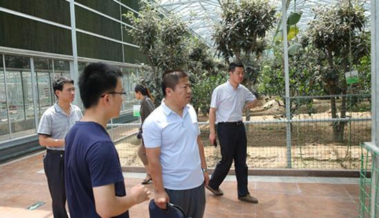 潍坊市旅游局检查组来示范园