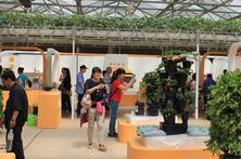 参观台湾馆的游客
