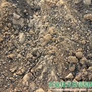 对定植前的土壤施肥