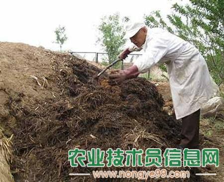 大棚蔬菜种植中如何合理使用有机肥