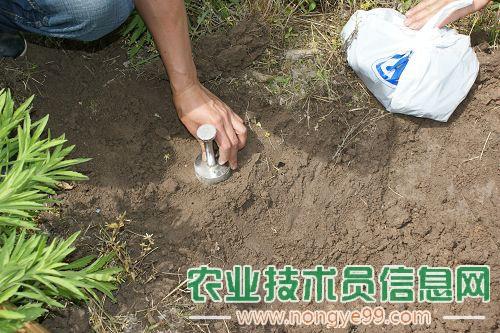 怎样正确采集土壤化验样品