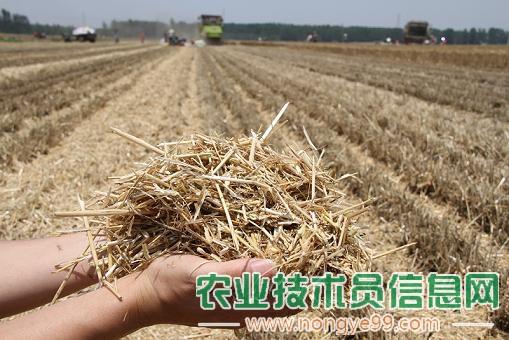 秸秆还田在农业生产中的意义
