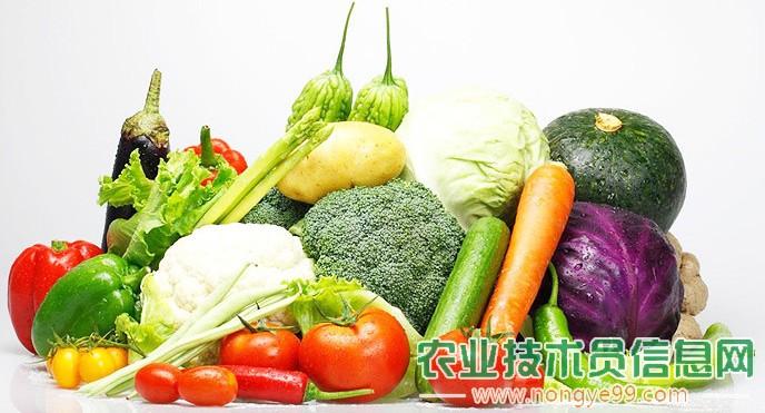 少农药、无农药蔬菜生产