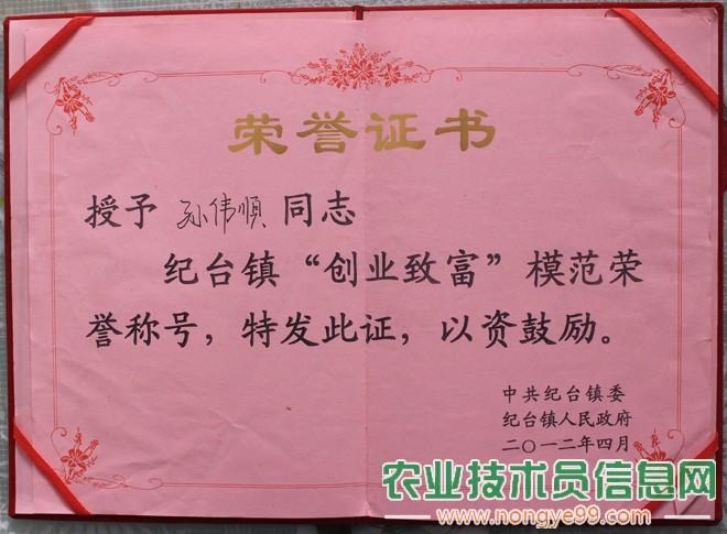 """孙伟顺被当地政府评为""""创业致富""""模范"""