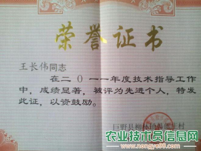 王长伟被菏泽市巨野县评为先进个人