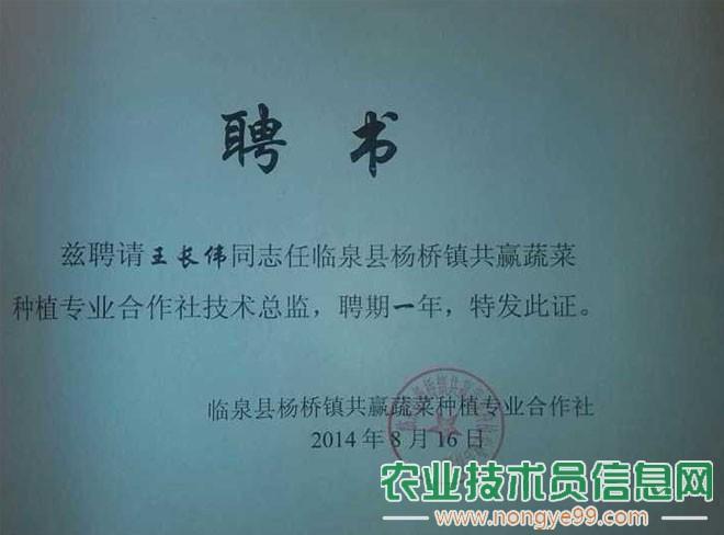 王长伟被安徽省阜阳市共赢蔬菜种植合作社特聘为技术总监