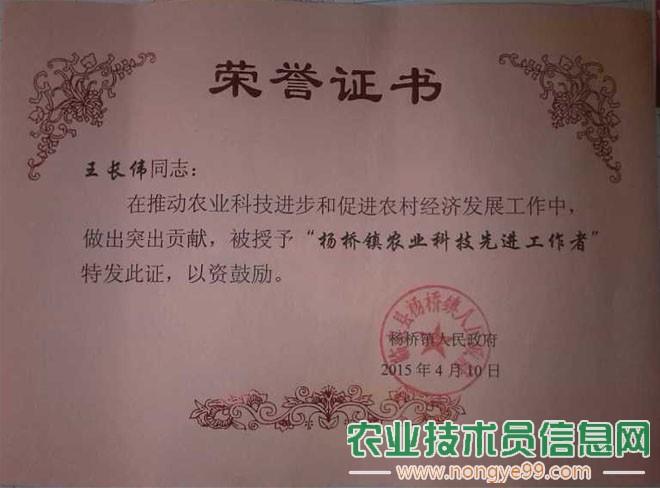 """王长伟被服务单位评为""""农业科技先进工作者"""""""