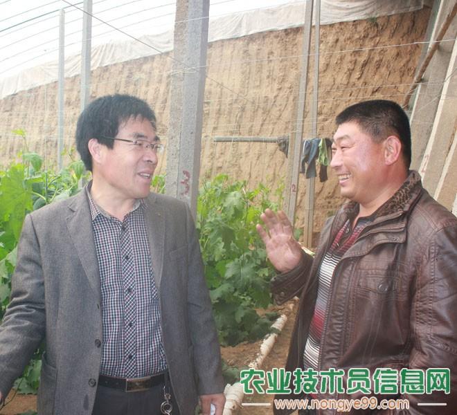 张克玉正在与菜农(丝瓜)交流